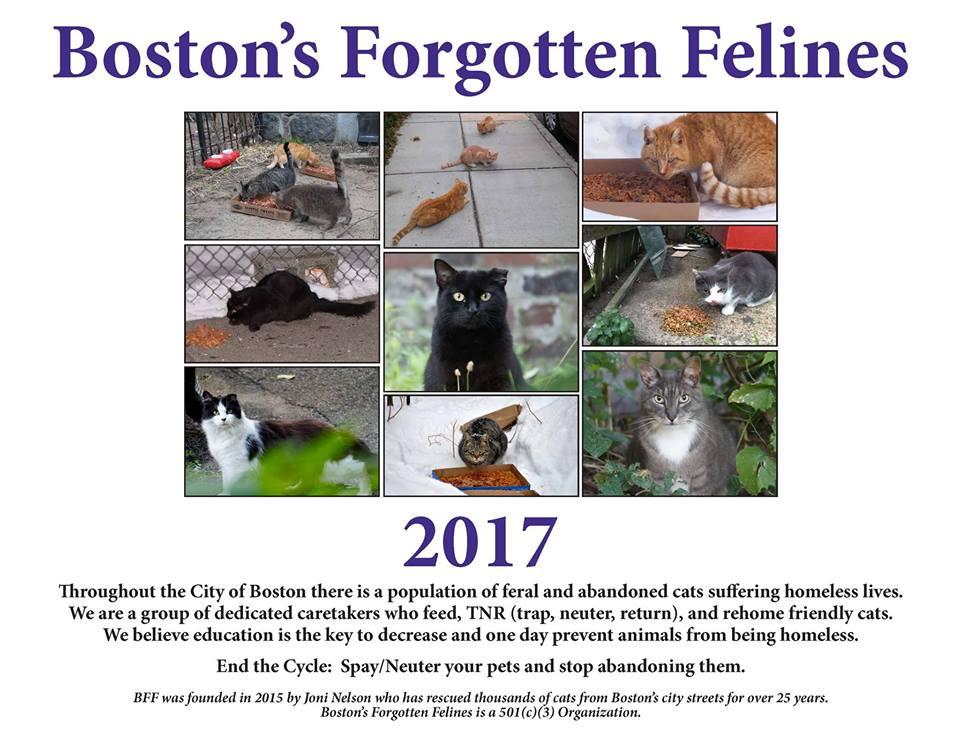 2017 BFF Calendar